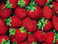 ... Strawberry-Wallpaper-fruit-6102247-1024-7681 ...