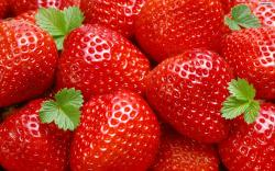 beautiful strawberries hd wallpapers cool desktop background images widescreen