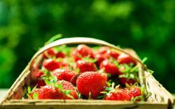 Strawberry Basket Berries Macro