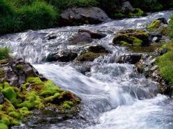 Do you ever feel like you are swimming against the stream?