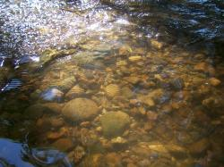 Stream bed