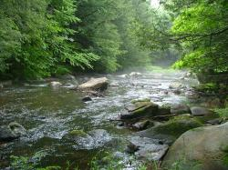 Because our streams work hard! The Farmington River, like many CT rivers, serves multiple purposes for multiple users: drinking water, hydropower, ...