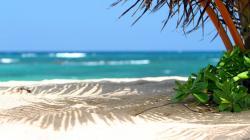 Beautiful Beach Scene 210