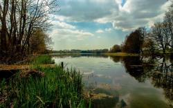 Stunning pond wallpaper 1920x1200 Original ...
