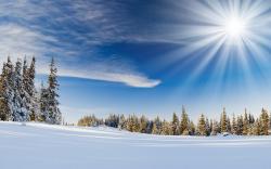Stunning Sunbeam Wallpaper 31308 1920x1200 px