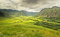 Summer green valley