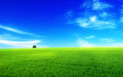 summer-landscape-wallpapers-green