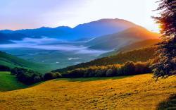Summer Landscape Sunset