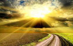 Golden Sunlight Wallpaper