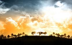 ... Sunlight Wallpaper · Sunlight Wallpaper