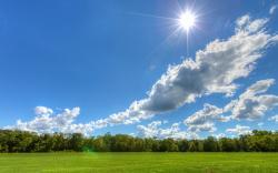 Sunny day landscape