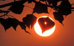 Sunrise sun silhouette