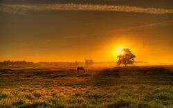 The Countryside wallpaper Sunset In The Countryside wallpapers HD free - 294838