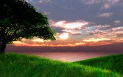 Green Landscape with Sea at Sunset wallpaper