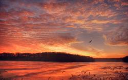 Sunset lake springfield