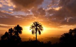 Sunset silhouette scenery