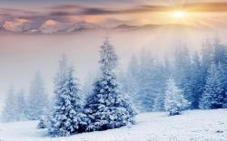 Sunset snow landscape