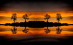 Sunset water mirrors