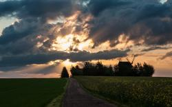 Sunshine windmill fields