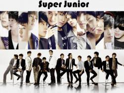 Super Junior super junior