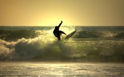 Surfing Wallpaper 5481 2560x1600 px
