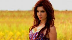 Susan Coffey HD Desktop Background wallpaper