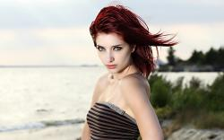 Susan Coffey HD wallpapers
