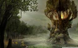 Swamp Wallpaper
