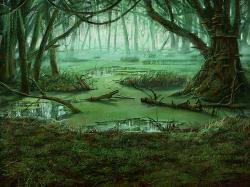 Swamp Wallpaper 25