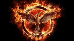 the-hunger-games-mockingjay-part-1-53b19e0a32efb-which-