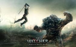 The Witcher Res: 1920x1200 / Size:436kb. Views: 8527