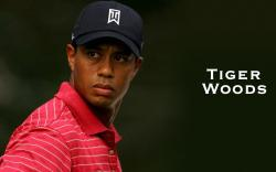 Tiger Woods Golf Player Wallpaper HD