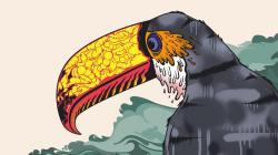 Toucan Bird Art