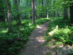 The Buckeye Trail is a 1,444 ...