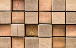 Tree blocks Wallpapers Pictures Photos Images. «