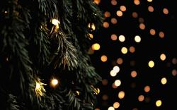 Tree Fir Branches Garland Lights New Year