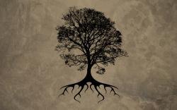 Hd Tree Desktop Wallpaper: Silhouette Tree Root Desktop Hd Wallpaper 1920x1200px