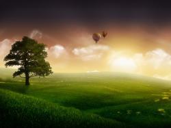 Download · Tree Wallpaper Desktop Hd · Download ...