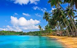 Tropical beach hd