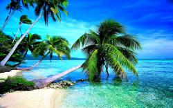 ... Free Beach Screensavers And Wallpapers – Tropical Beach With Clear Water Refresh Your PC Screen Using ...