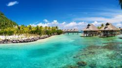 Beautiful Tropical Wallpaper