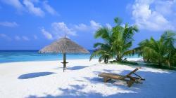 Tropical Photos Wallpaper Wallmetacom
