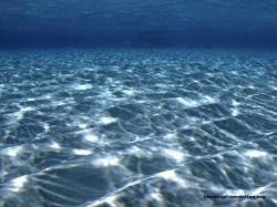Underwater Desktop Wallpapersithemescom Ithemes 1600x1200px
