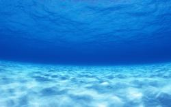 Underwater Wallpaper Image Picture