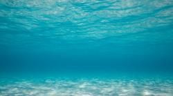 Underwater Wallpaper 21211