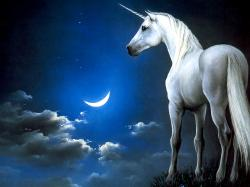 Unicorn Pictures · Unicorn Pictures ...