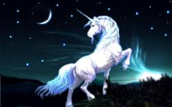 ... Unicorn Wallpaper ...