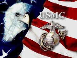 Happy 234th Birthday, Unites States Marine Corps!