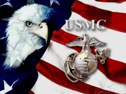 Happy 234th Birthday, Unites States Marine Corps!