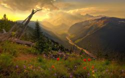 Green Valley Landscape at the Sunrise wallpaper